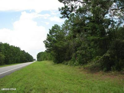 16722 HIGHWAY 20, YOUNGSTOWN, FL 32466 - Photo 2