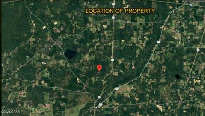 0 PLEASANT HILL ROAD, Vernon, FL 32462 - Photo 2