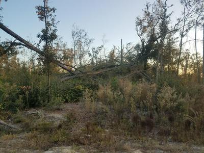 0 STONE AVENUE, ALTHA, FL 32421 - Photo 2
