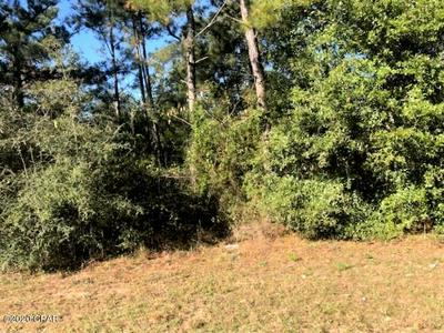 0 FAIRVIEW ROAD, Alford, FL 32420 - Photo 1