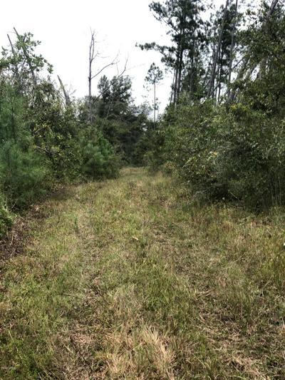 0000 SEAY ROAD, Cottondale, FL 32431 - Photo 2
