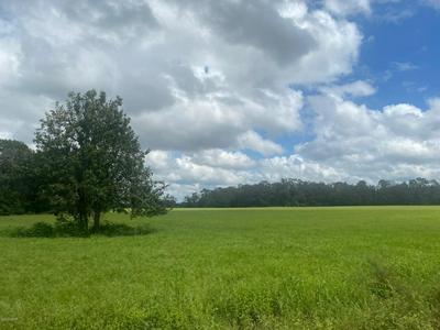 0 BENTLEY ROAD, Cottondale, FL 32431 - Photo 1