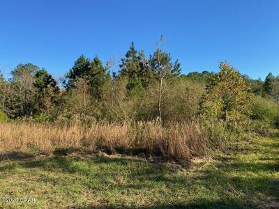 000 STATE RD 177A, Bonifay, FL 32425 - Photo 2