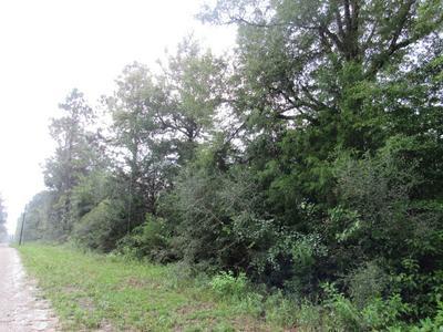 0000 NW FELIX FLANDERS ROAD, Altha, FL 32421 - Photo 1