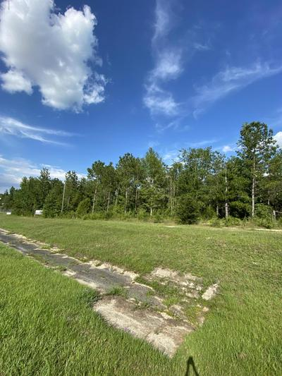 0000 231 HIGHWAY, Cottondale, FL 32431 - Photo 2