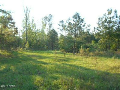 0000 RIVER ROAD, Sneads, FL 32460 - Photo 2