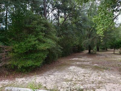 000 NEALS LANDING ROAD, Bascom, FL 32423 - Photo 2