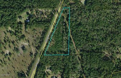 0 BLUEBERRY DRIVE, Sneads, FL 32460 - Photo 2