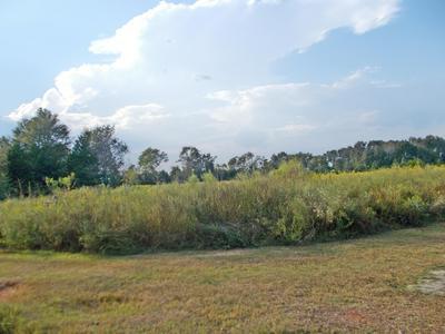 0 CECIL ROAD, Campbellton, FL 32426 - Photo 2