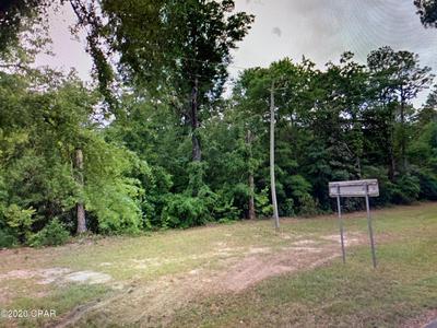 U S 90 BLUE STAR HIGHWAY, Chattahoochee, FL 32324 - Photo 2