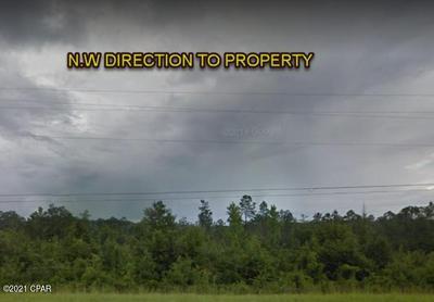 0 PLEASANT HILL ROAD, Vernon, FL 32462 - Photo 1