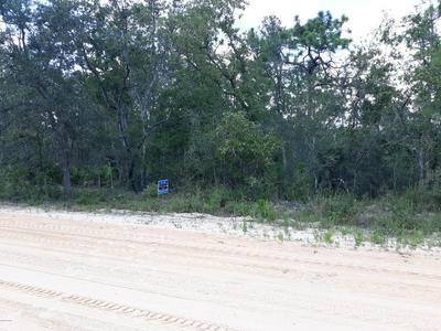 00 GRAND QUIVIERA CR, Alford, FL 32420 - Photo 2