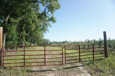 00 CEDAR POND ROAD, Bascom, FL 32423 - Photo 2