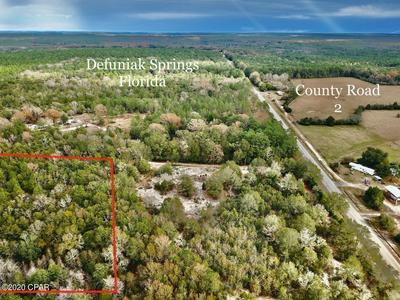 00 HWY 2 WEST, Defuniak Springs, FL 32433 - Photo 2