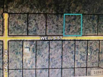 000 WELLS STREET, Alford, FL 32420 - Photo 1