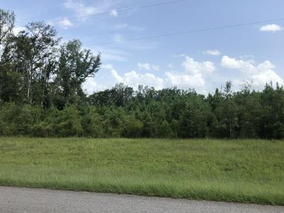 0000 CORBIN ROAD, Cottondale, FL 32431 - Photo 2