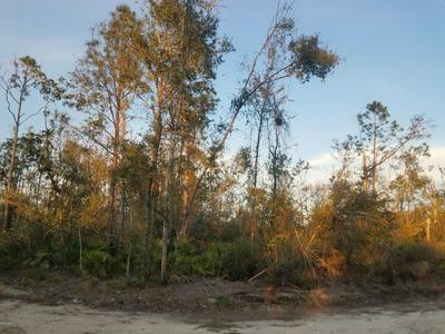 0 STONE AVENUE, ALTHA, FL 32421 - Photo 1