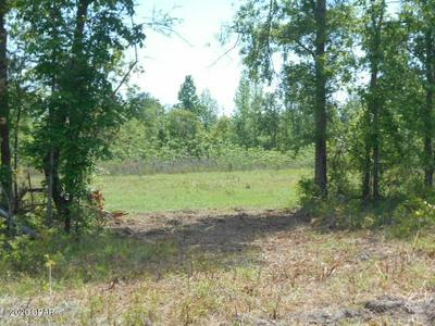 0000 RIVER ROAD, Sneads, FL 32460 - Photo 1