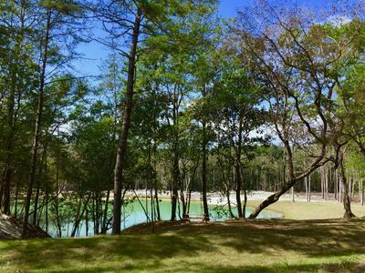 5730 STRICKLAND RD, Ebro, FL 32437 - Photo 2