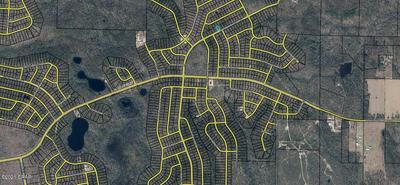 LOT 27 GOODMAN HILL ROAD, Chipley, FL 32428 - Photo 2