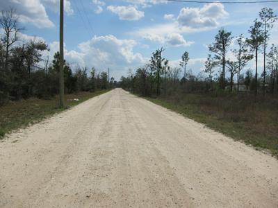 00 N DOG WOOD LN NW, Altha, FL 32421 - Photo 2