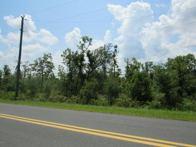 00 NW MILLER ROAD, Altha, FL 32421 - Photo 2