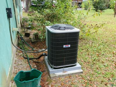 239 OLD TRANSFER RD, Wewahitchka, FL 32465 - Photo 2