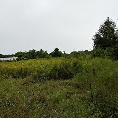 000 N HIGHWAY 179A, Westville, FL 32464 - Photo 2