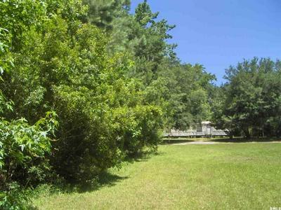 53 PRESCOTT RD, Yemassee, SC 29945 - Photo 2