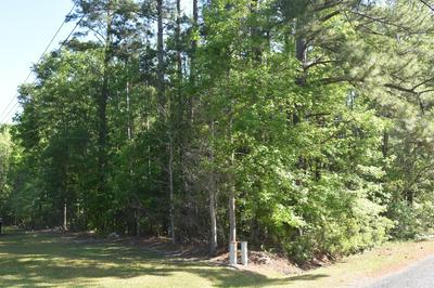 0 REARDON LANE, Walterboro, SC 29488 - Photo 1