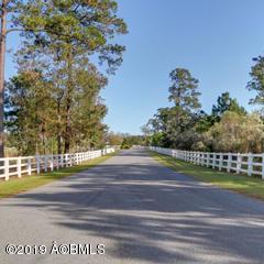 1035 BRIDLE PATH BLVD, Hardeeville, SC 29927 - Photo 2