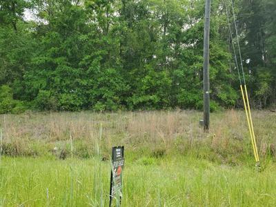 44 OAKWOOD DR, Hardeeville, SC 29927 - Photo 2