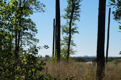 1744 TELFAIR PLANTATION DR, Hardeeville, SC 29927 - Photo 1