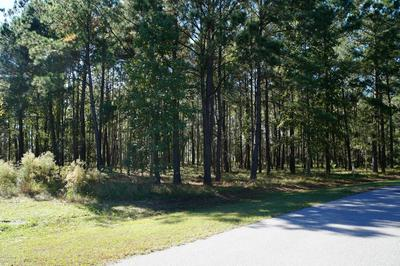 1744 TELFAIR PLANTATION DR, Hardeeville, SC 29927 - Photo 2
