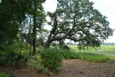 220 BULL POINT DR, Seabrook, SC 29940 - Photo 2