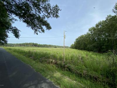 80 BUCKNER RD, Islandton, SC 29929 - Photo 2