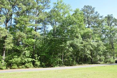 0 REARDON LANE, Walterboro, SC 29488 - Photo 2