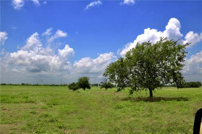 LOT 16-B REAGANS WAY, NAVASOTA, TX 77868 - Photo 1