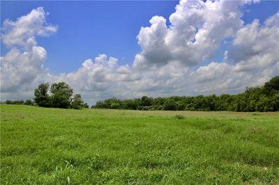LOT 12 REAGANS WAY, NAVASOTA, TX 77868 - Photo 1