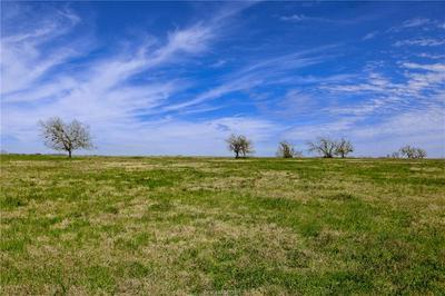 LOT 15 REAGANS WAY, NAVASOTA, TX 77868 - Photo 1