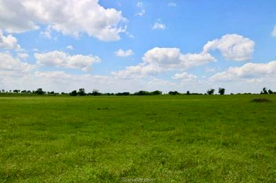LOT 6 REAGANS WAY, NAVASOTA, TX 77868 - Photo 1