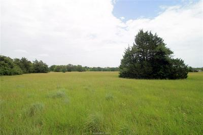TRACT A COUNTY ROAD 118, Caldwell, TX 77836 - Photo 2