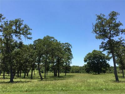 10597 ST JOHN DR, Iola, TX 77861 - Photo 1