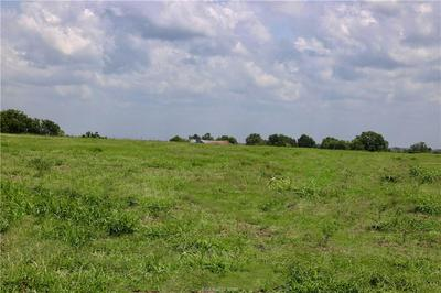 LOT 5 REAGANS WAY, NAVASOTA, TX 77868 - Photo 2