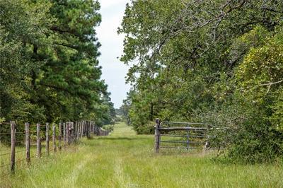 200 +/- COUNTY ROAD 228, Bedias, TX 77831 - Photo 1
