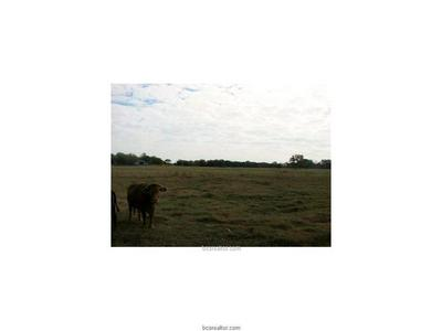 0000 HUDSPETH ROAD, Bryan, TX 77808 - Photo 2