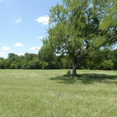 3785 FM 3061, Thorndale, TX 76577 - Photo 2