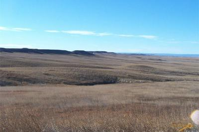 OTHER, New Underwood, SD 57761 - Photo 1