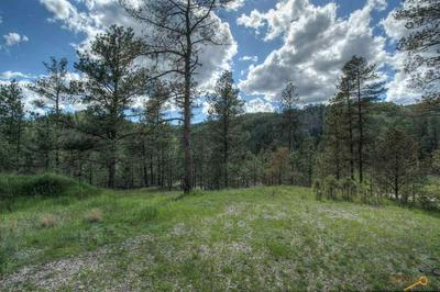LOT 14 GRANITE POINT CT, Keystone, SD 57751 - Photo 1