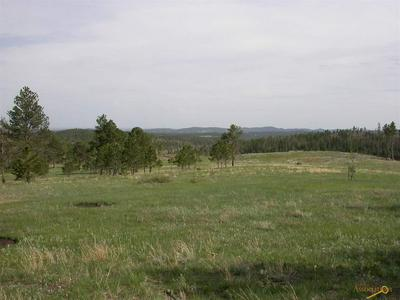 TBD RUSHMORE RANCH RD, Keystone, SD 57751 - Photo 1